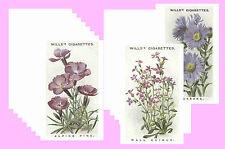ALPINE FLOWERS (1913) - CIGARETTE CARD POSTCARD SET # 1