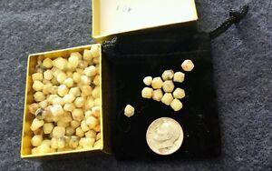 200 Medium RHODIZITE Crystals