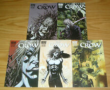 the Crow: Death and Rebirth #1-5 VF/NM complete series - kyle hotz - ashley wood