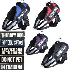 Therapy Dog Harness Pet Vest Collar Outdoor W/ 2 Patches Service Dog in Traning
