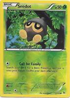 SEEDOT 5/106 XY Flashfire Reverse Holo Pokemon Card   NM