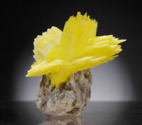 Arcanite crystals on matrix from Poland yellow like wulfenite