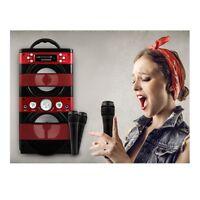 Portable Karaoke Anlage Idol 2.1/FM-Radio/LED/Bluetooth/USB/SD/ 2 x Mikrofone/ei