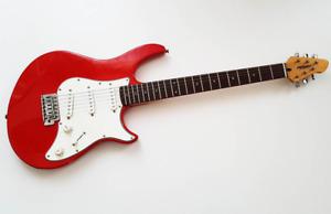 Peavey Raptor Special 6 String Electric Guitar 🎸