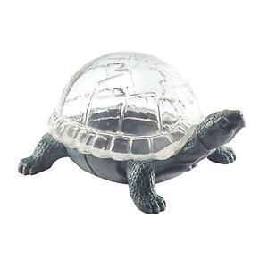 Turtle Shaped Glass Terrarium - Glass Shell Dome Indoor Flower Succulent Planter