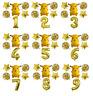 Pikachu Pokemon Balloon Kit GOLD 30'' Age Number Happy Birthday 6 Party Balloons