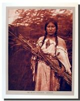 The Rush Gatherer Arikara Indian Maiden Native American Wall Art Print (16x20)