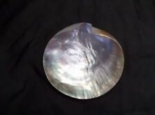 """Mother of Pearl shell tray 6"""" footed plate vanity tray decor seashell"""