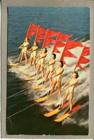Postcard FL Winter Haven Cypress Gardens Aquamaids Skiing 2143H