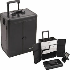 Professional Rolling Makeup Case 2 Wheels, 4 Drawers Cosmetic Trolley by Sunrise