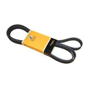 CRP 6K2510 - Belt 6K X 2510