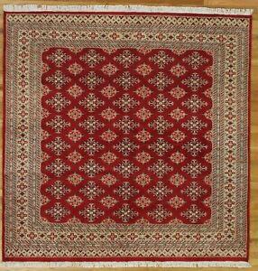 Classy Bokara Living Room Red Bokara Rug All-Over Jaldar Wool&Silk Handmade Rug
