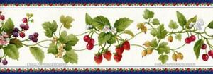 Berries Strawberry Cherry Grape Vine Kitchen Fruits & Floral Wallpaper Border