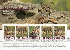 Países Bajos 2017 estampillada sin montar o nunca montada mamíferos en peligro de extinción lince ibérico 5v M/S Animales Salvajes sellos