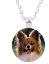 "Papillon Dog 20"" Silver Tone Chain Glass Cabochon Pendant Necklace In Gift Box"