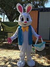 Easter Bunny Mascot Costume Rabbit Animal Adult Size Cartoon Fancy Dress Cosplay