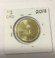UNC 2018 Canadian 1 Dollar Loonie From Mint Roll! BU *Sealed In Holder*