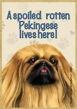 """Magnet-A Spoiled Pekingese Lives Here Wood Magnet-3.5"""" X 2.5"""""""