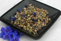 Krauterino24 - Kornblumenblüten ganz (mit Kelch) - 50g