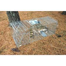 "Pet Trex Zinc Live Animal Trap Racoon Skunk Cat Traps Almost 37 ""Long NEW"