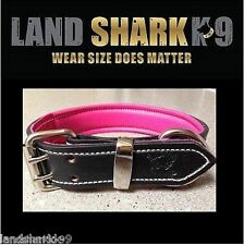 Black Leather Dog Collar with Soft Pink Leather Padded Inner Lining