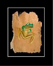 Green Reproduction Realism Art Prints