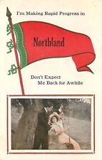 """Making Rapid Progress"" in Northland Wisconsin~Couple on Tree Swing~1913 Pennant"