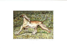 Afghan Hound Limited Edition Art Print by Elle Wilson The spirit of Afghan