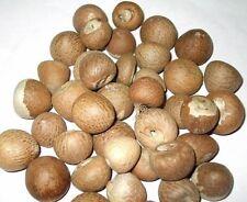 90g Fresh Organic Whole Areca Catechu (Betel Nut) from Sri Lanka