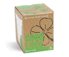 Grow me Glücksklee zum selber Züchten Viel Glück Geschenkidee Pflanzen Klee