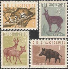 Albania 1962 Lynx/Deer/Boar/Chamois/Animals/Nature/Wildlife/Cat 4v set (n45307w)
