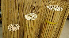 Bambusmatte Rollzaun Windschutz Sichtschutz Gartenzaun 183x244cm 18-20mm goldgel