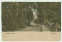 Barsham Road, Beccles, Suffolk, 1908 Wrench Postcard, B948