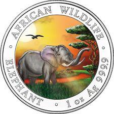 Somalia 100 Shilling 2019 Elefant Silbermünze African Wildlife Serie in Farbe