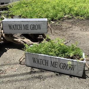 2pcs Watch Me Grow Flower Succulent Pots Planter Wooden Box XL Brand New Craft