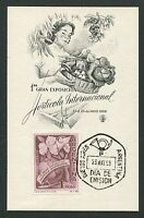 ARGENTINA MK 1959 FLORA HORATICOLA MAXIMUMKARTE CARTE MAXIMUM CARD MC CM d7083