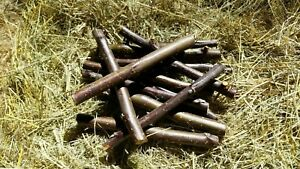 100 gram Apple wood chew stick toys for Rabbits and Guinea Pigs