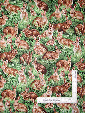 Bunny Rabbit Easter Animal Cotton Fabric Fabriquilt Inc American Wildlife - Yard