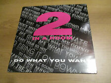 "2 IN A ROOM - DO WHAT YOU WANT Vinyl 12"" 45RPM UK 1989 Hip House BIGLIFE BLR 20T"