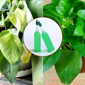 Hydroponic liquid plant fertilizer Nutrient Best Solution Seedling Recovery root