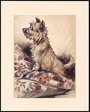 CAIRN TERRIER LITTLE DOG ON CUSHIONS CHARMING MOUNTED DOG PRINT READY TO FRAME