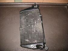 2002 KLR650 RADIATOR ASSY WITH CAP KAWASAKI KL KLR 650 1987-2007 39060-1074