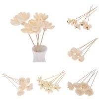 Künstliche Blume Rattan Sticks Aroma Diffusor Reed Home Duft Verteilen DIY Dekor
