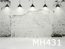 20X10FT Brick Wall Photography Photo Prop Studio background Vinyl backdrop MH431