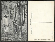 Old Ceylon Postcard - Rubber Tree Tapping - Women at Work, Farming