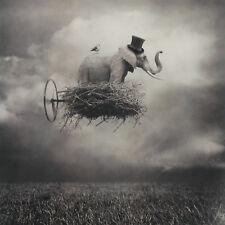 BEATA BIENIAK - Signed Ltd Edition Fine Art PHOTOGRAPH - Flying Elephant in Nest
