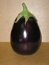 1000 BLACK BEAUTY EGGPLANT Solanum Melongena Seeds