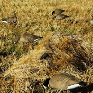 Avery Greenhead Gear Banded Layout Blind Kit Winter Wheat