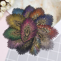 12pcs/1set feather sew iron on patch badges sticker cloth patches applique ZP
