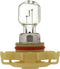 Fog Light Bulb-Limited Philips 12276B1